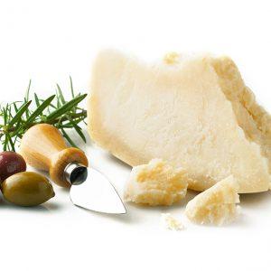 餐饮奶酪类产品